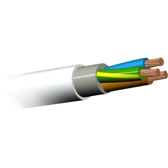 PFXP 500V 4G4